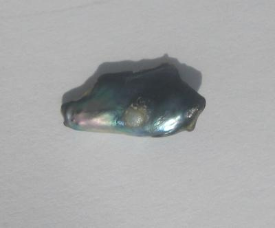 1.25 carat Abalone Pearl for Sale