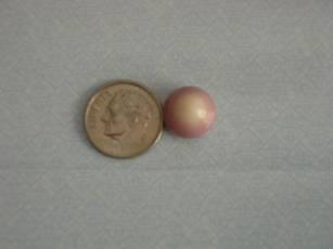 10 Carat Quahog Pearl