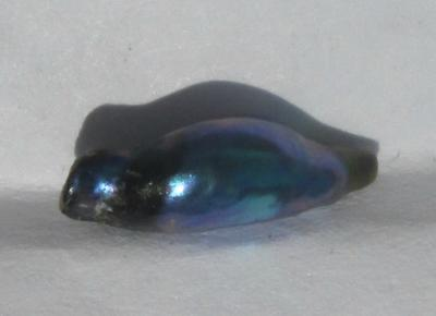 10mm Iridescent Bluish Abalone Pearl for Sale