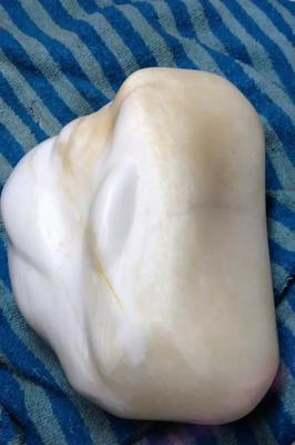 12 Kilos giant clam pearl