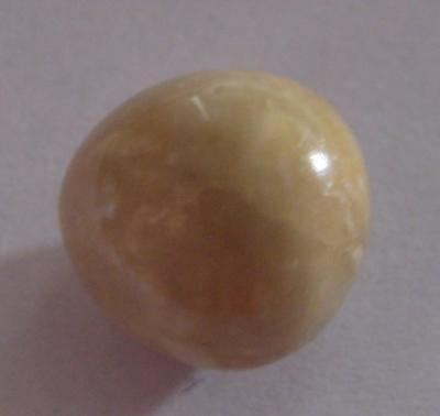 14.1 carat conch pearl