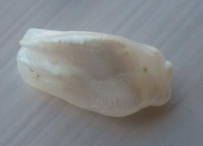 14mm Baroque Natural USA Pearl