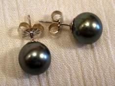 Black Tahitian Pearl Stud Earrings