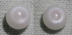 clam pearl