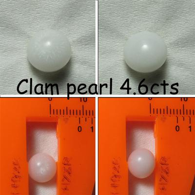Clam Pearls 4.6 cts