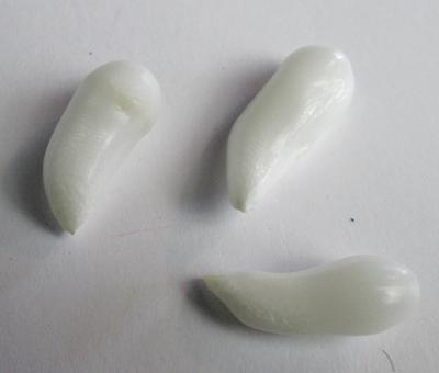 3 Clam Pearls Curved Drop Shape 27+ carats