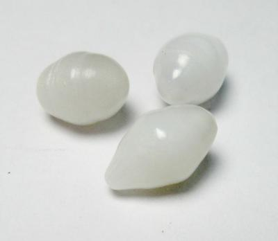 3 Clam Pearls Set 7 carats Total