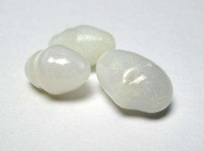 3 Clam Pearls with Full Flame Oval Set 12 carats Total