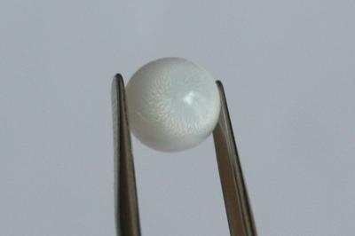 3.1ct clam pearl