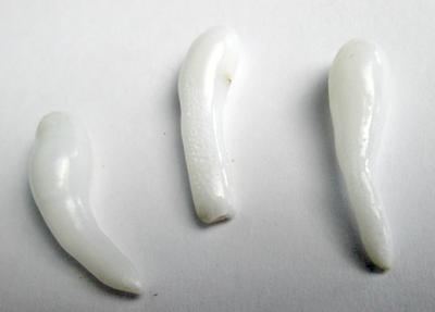 3 Long Clam Pearl Drops 18+ carats Total 24+ mm