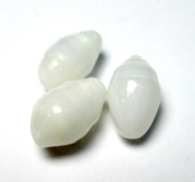 3 Oval Clam Pearls 12+mm 15carats total for Sale
