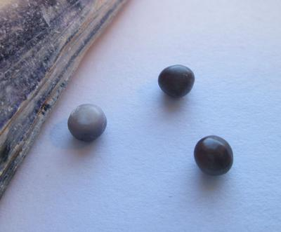 3 Purple Colored Blue Mussel Pearls 1.10 carat total