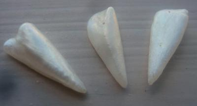 3 Spike Natural USA Pearls