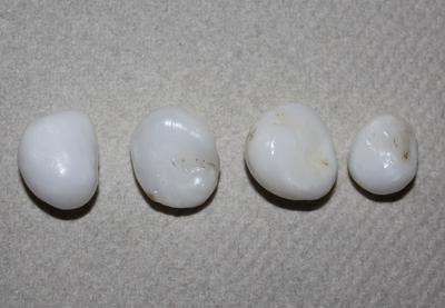 4 Clam Pearls - 46 carats total
