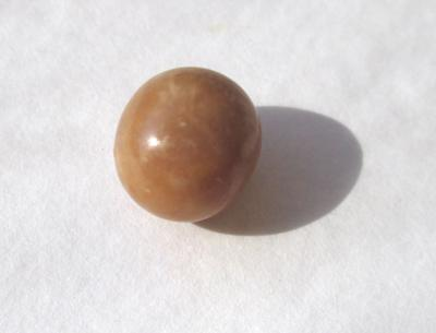 6.10 carat Brown Conch Pearl Oval Shape