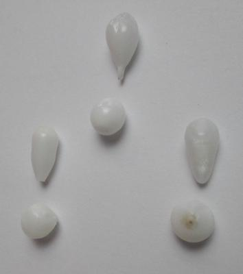 6 Clam Pearl Set - Necklace & Earrings Potential