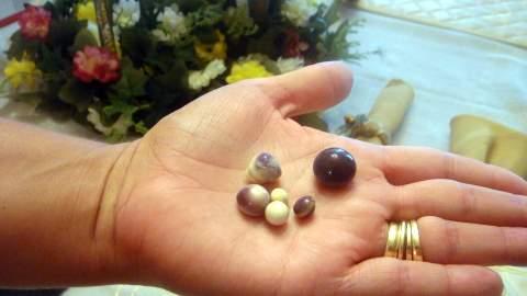 6 Quahog Pearls