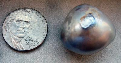 64.8 carat Natural USA Silver Pearl