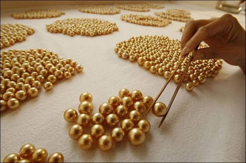 gold cultured pearls