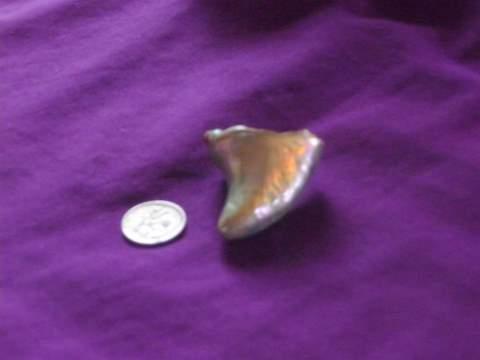 Abalone Pearl