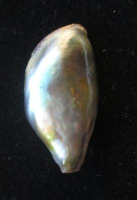 Abalone Pearl with Iridescence 10 carats 14mm