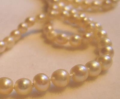 Antique Edwardian Natural Saltwater Pearl LONG Necklace