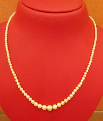 Salt Water Natural Pearl Necklace at 33.35 carats