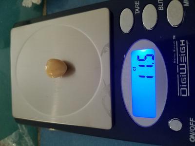 11.5 carat Conch Pearl Triangle Shape