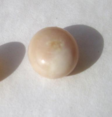 Beige Conch Pearl 3.55 carats Button Shape