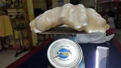 34 kg pearl
