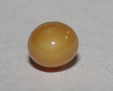 Brown Conch Pearl Oval 6mm for Sale