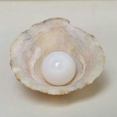 Clam Pearl 18.10 ct with Flame