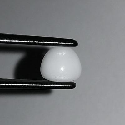 Clam Pearl 2.30 ct with Flame