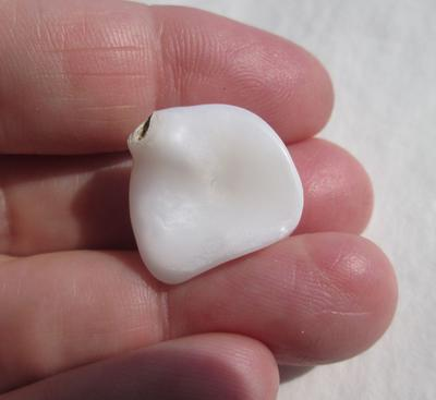 Clam Pearl 21+ carats for Sale