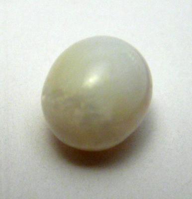 2.5 carat clam pearl