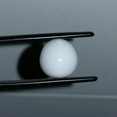 Clam Pearl 6.41 ct