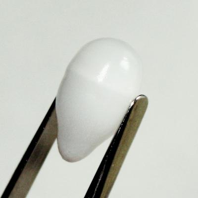 7.15ct clam pearl