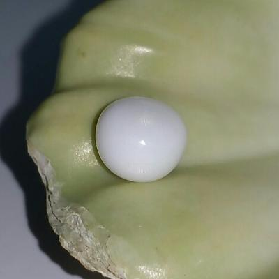 Clam Pearl Button Shape 3.2 ct with Flame