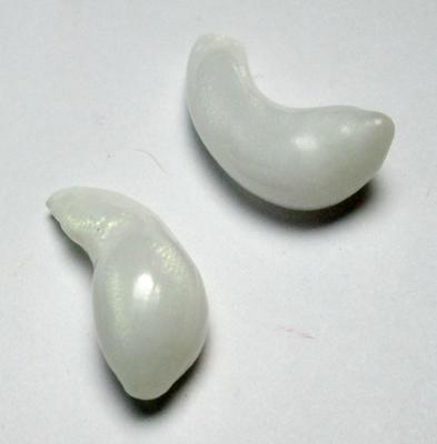 Clam Pearl Pair Curved Drops with Full Flame 21mm 17+ carats