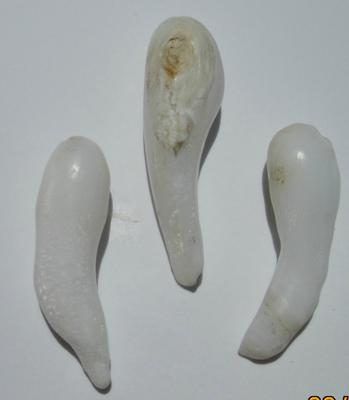 Clam Pearls 3 Long Drops 25-27mm for Sale