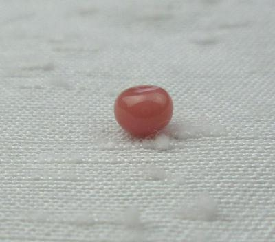 Dark Pink Conch Pearl 4mm Button Shape