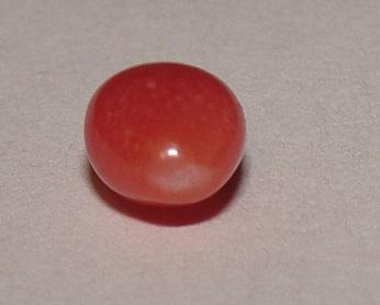 Dark Pink Conch Pearl 7 x 4mm