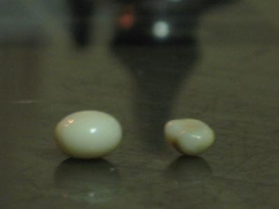 Two Natural Pearls