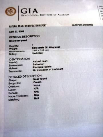 Gulf Pearl Certificate