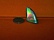 29 kt abalone pearl