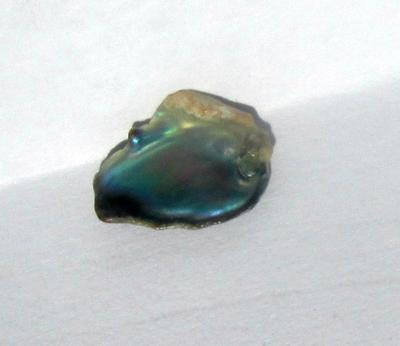 Iridescent Abalone Pearl 1 carat for Sale