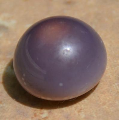 Miss Porters Purple Quahog Pearl