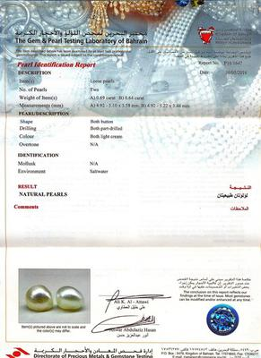 Certificate - Natural Basra Pearl Earring on 18k Gold
