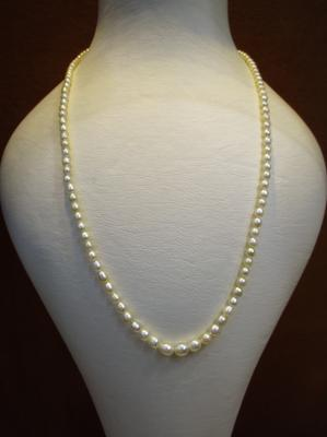 Natural Basra Pearl Necklace 43 carats from Persian Gulf