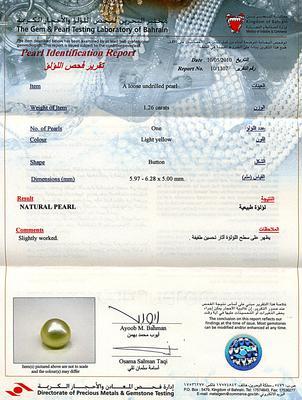 Natural Basra Pearl Pendant 18K Gold Button Shape - Certificate